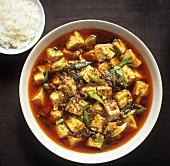 Mapo Doufu (Pikantes Tofugericht aus der Sichuan-Küche)