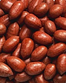 Unshelled pecans (full-frame)
