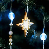 Star-shaped biscuit with silver dragées hanging on tree