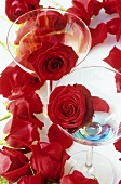 Red roses and two aperitif glasses