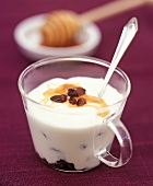 Sultana surprise (Natural yoghurt with honey and sultanas)