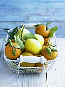 Satsumas and lemons in wire basket