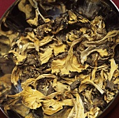 Dried chanterelles (Cantharellus lutescens)