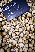 Cockles on a market stall in Libourne, Bordeaux, France
