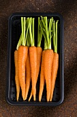 Fresh carrots in plastic tray