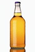 An unlabelled bottle of cider