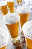 Mehrere Gläser Lager-Bier