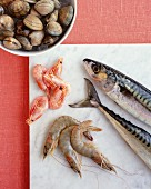 Fresh prawns, mackerel and shellfish