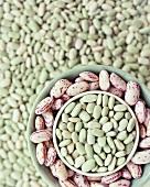 Flageolet beans and borlotti beans