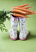 A bunch of carrots on a pair of child's rubber boots