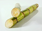 Sugar cane, cut into two pieces