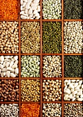 Various types of pulses in a typesetter's case