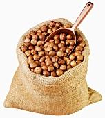 Shelled hazelnuts in jute sack with scoop