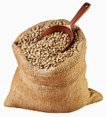 Green lentils in jute sack with scoop