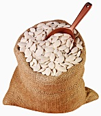 White pumpkin seeds in jute sack with scoop