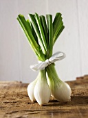Spring onions, tied together