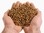 Hands holding soya mince