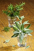 Fresh sage and sprigs of rosemary in glasses
