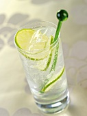 A glass of gin and tonic with slices of lime