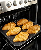 Six baked croissants on a baking tray in an oven