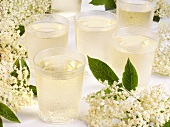 Elderflower lemonade in glasses