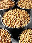 Dried soya beans in buckets