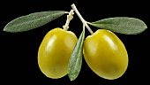 Two green olives with stalk and leaves