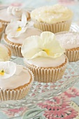 Cupcakes with white pansies