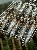 Grilled sardines in a grilling basket