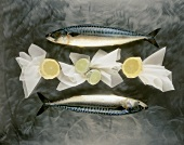 Two mackerels and lemons in muslin cloths