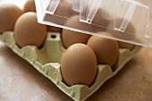 Braune Eier in der Schachtel