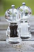Salt and peppermill
