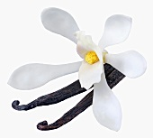 Vanilla pods and orchid