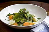 Winter salad (Salad leaves with root vegetables)