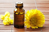 Aromathery: small bottle of oil and yellow flowers