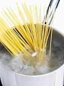 Spaghetti in boiling water