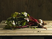 Freshly picked beetroot with leaves