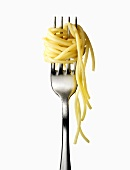 Spaghetti wrapped around a fork