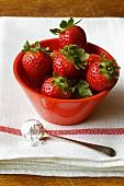Fresh strawberries in red bowl, spoonful of sugar beside it