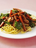 Chicken ragout with egg noodles