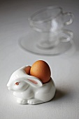 Boiled egg in a rabbit egg cup