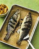 Baked trout with herb stuffing