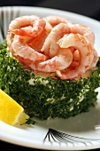 Herb-coated fish mousse with prawns