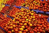 Various tomatoes on display at a market