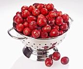 Viele Cranberries im Fussseiher