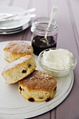 Raisin scones with clotted cream and jam