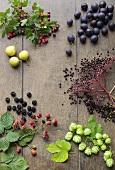 Berries, damsons, hops and pears