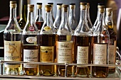 Various types of cognac