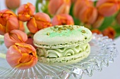 A green tea macaroon with pistachios