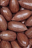 Whole pecan nuts, macro zoom